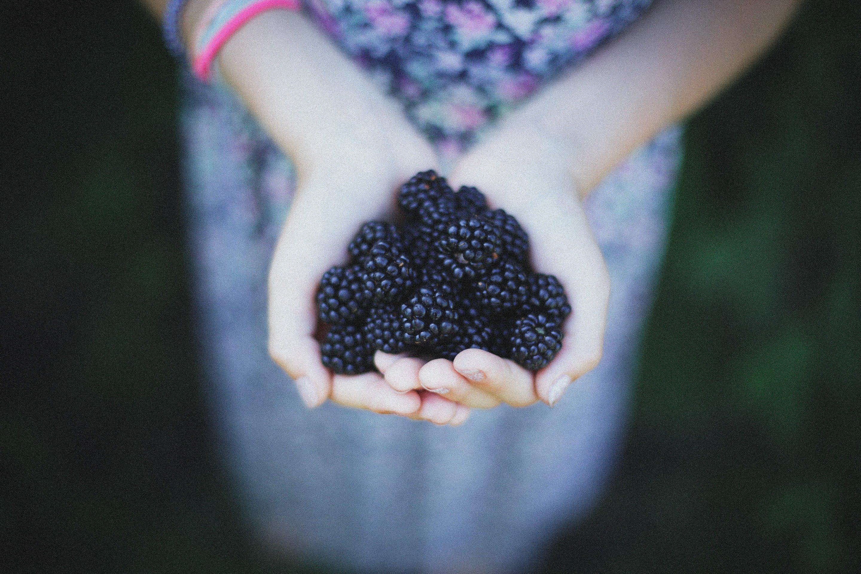 黑莓減糖法式馬卡龍新年限量
